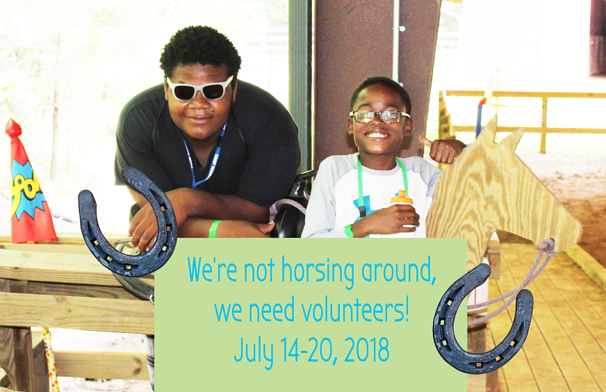 Camp Wannaklot Volunteers Needed